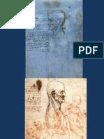 CANON DEL ROSTRO.pdf