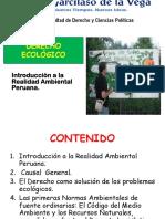 Clase 5A Derecho Ambiental Introdu Realida Ambien 2018 (1)