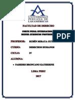 DERECHOS HUMANOS FINAL.docx
