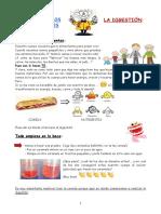 La Clase de Los Experimentos - La Digestion