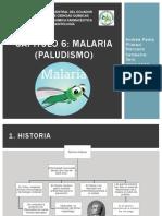 Parasitología Capítulo 6 Malaria
