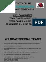 Wildcat Special Teams