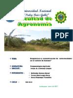 Avance de Proyecto -Fito (3) (1) 1