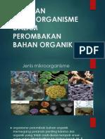 Mikroorganisme Dalam Perombakan Bahan Organik