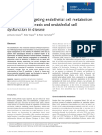 Principles of Targeting Endothelial Cell Metabolism