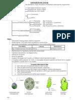 2.plantkingdm-hsslive.pdf