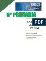 RAZ. VERBAL IV BIM.doc