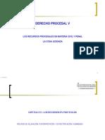 4. Capitulo II Recurso de Aclaracion Rectificacion y Enmienda