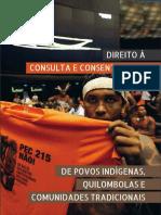 2016 Livro RCA DPLf Direito a Consulta Digital
