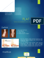 Flat Foot Fixed