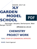Chemistry Project- Antacids