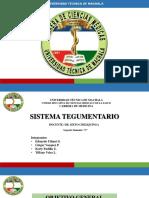 Embriología Sistema Tegumentario