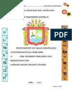 IMPRIMIR CONTAMINACION DEL MERCURIO.docx