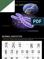 chromosomalabnormalities-130309233823-phpapp01