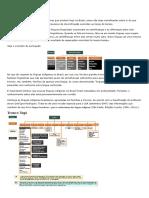 No Brasil atual _ Línguas _ Troncos e famílias.pdf