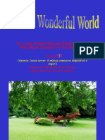 A Wonderful World amazing and interesting
