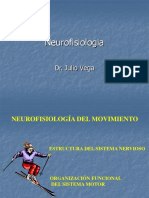 Neurofisiologia Del Movimiento