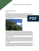 Article -4 Cambio Climatico