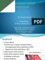 ppt glaukom