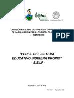 seip.pdf