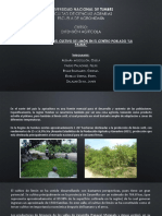presentacion extencion agricola.pptx