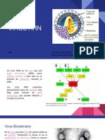 virus ARN