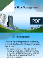Fin 3n Financial Risk Management