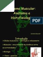 23006053 Anatomia e Histofisiologia Muscular