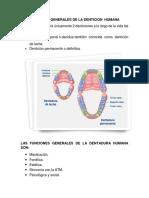 Funciones Generales de La Denticion Humana