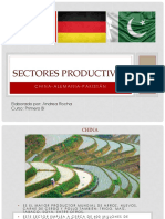 Sectores Productivos Alemania China Pakistan