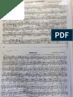 carpetaver6.pdf