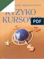 Kowalik P., Kustosz M. - Ryzyko Kursowe (2016)