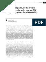 Analisis Penultimo Poema España