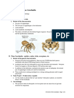 3-OverviewoftheArachnida.pdf