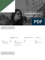CV 2017 Camilamoraga