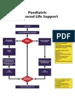 Algorithms - Paediatric Advanced Life Support.pdf