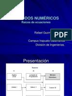 Metodos Numericos raices