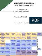 Malla Curricular Lic en Educ Primaria-plan 2012- Competencias Para Cada Curso