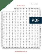 matriz-de-letras-medianas-24x24-fichas-1-5.pdf