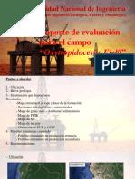 EvaluaciónYacimientoPetrolíferos