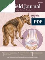 Artritis en El Perro y Gato
