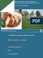 Bioeconomía Porcina