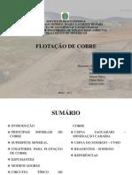 Circuito Típico de Beneficiamento de Sulfetos.pptx