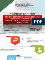 Presentación Del Proyecto - COCUI BAR1