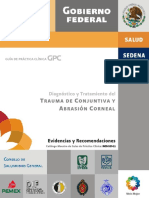 Guia de Practica Clinica. Dx Tratamiento Del Trauma de Conjuntiva y Abrasion Corneal