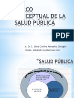 Marco Conceptual de La Salud Pública