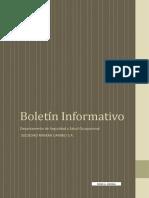 Boletin Informativo_ Seguridad