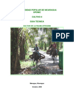 Cultivo de La Palma Africana - Cultivo II -3er Año 2017 7