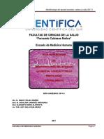 Guía Morfo II 2017_II.pdf