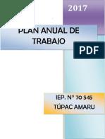 1492800652_PlanAnualDeTrabajo 2017 - 70545
